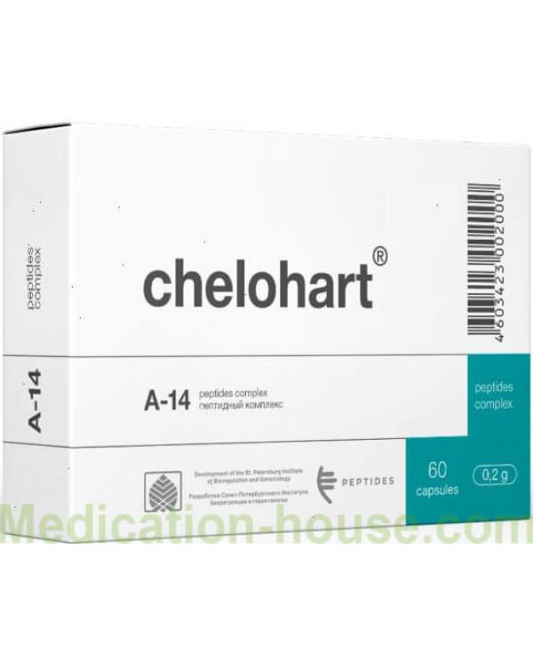 Chelohart caps #60